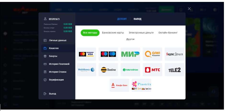 Доступные платежные системы
