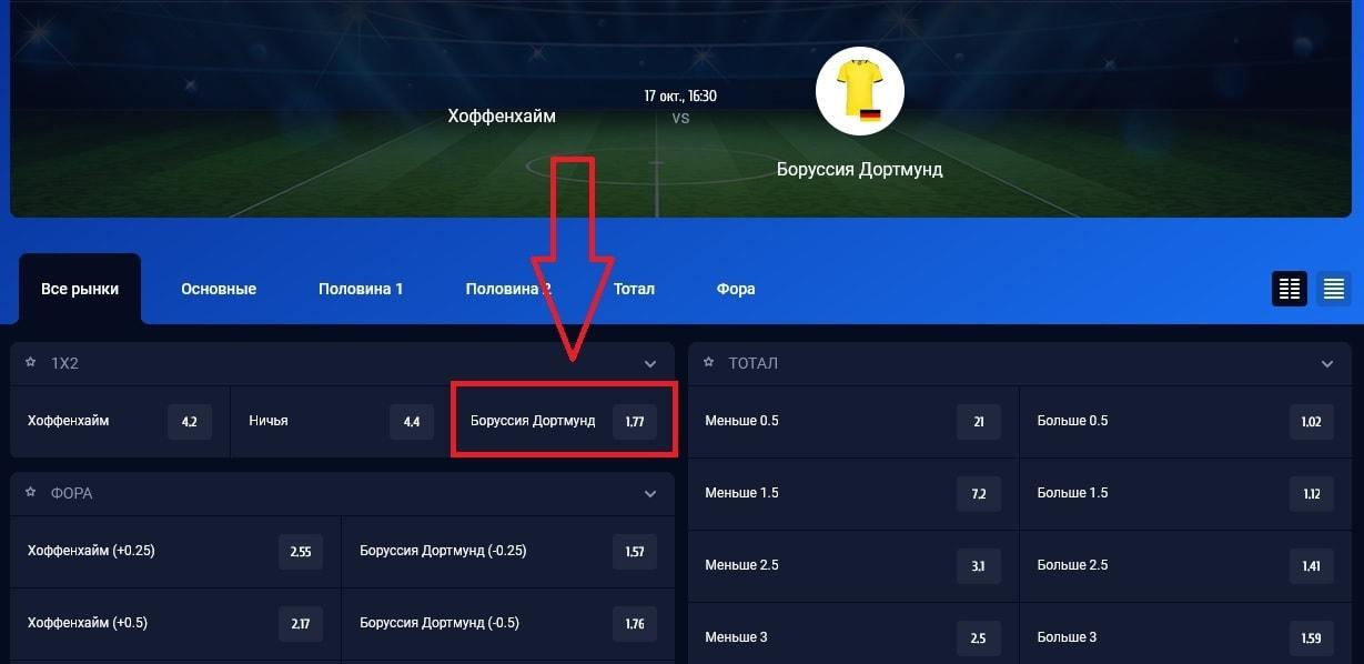 матч «Хоффенхайм» - «Боруссия» Д