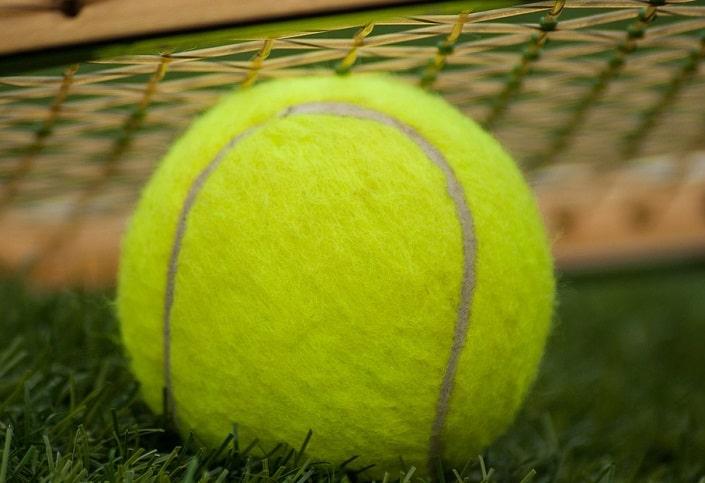Стратегия двойная ставка на теннис